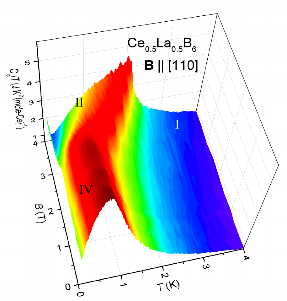 Thermodynamic study of novel strongly correlated electron systems