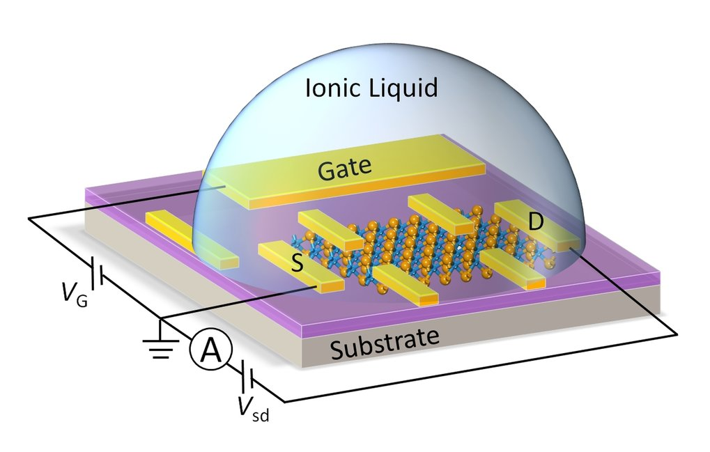 New metals and superconductors from ionic liquid gating