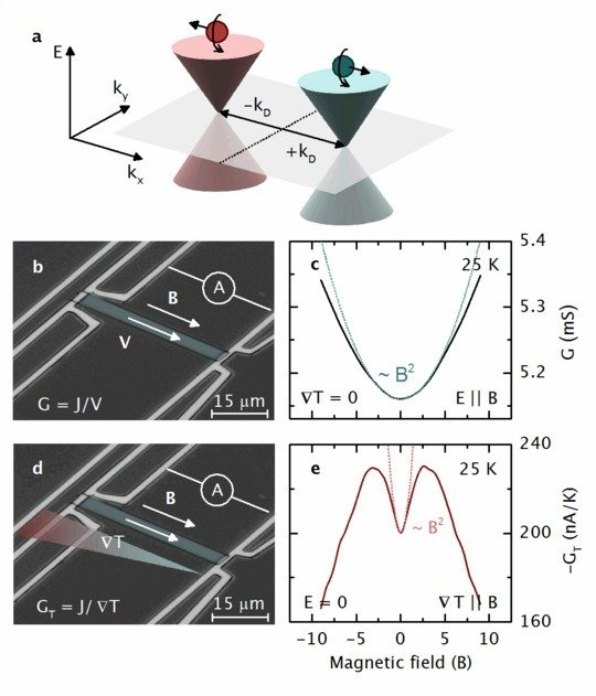 "<p><strong>a</strong>, In a strong magnetic field, the Weyl nodes quantize into Landau levels. The lowest Landau levels exhibit a linear dispersion with distinct chirality (±<em>χ</em>). Parallel electric (<strong><em>E</em></strong>) and magnetic (<strong><em>B</em></strong>) fields pump chiral charges from one cone into the other, which breaks chiral symmetry. <strong>b</strong>, Magneto-conductance without zero-field contributions (Δ<em>G</em>) at selected temperatures (see colour scale), for <strong><em>E</em></strong> ∥ <strong><em>B</em></strong>. <strong>c</strong>, Δ<em>G</em> versus |<strong><em>B</em></strong>| for different angles <em>φ</em> (colour scale) between the electric and magnetic fields (see inset), at <em>T</em> = 300 K. <strong>d</strong>, Angular dependence of Δ<em>G</em> at <em>T</em> = 300 K, for varying magnetic field strength (colour scale).</p> <p align=""right"">J. Gooth <em>et al., </em>Nature <strong>547</strong>, 324–327 (2017)</p>"